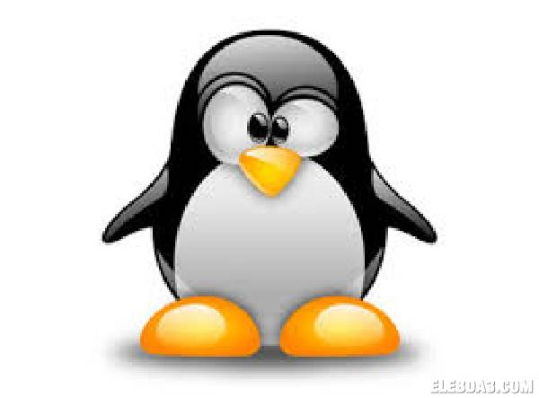 Linux Plus المهندس طارق هلال