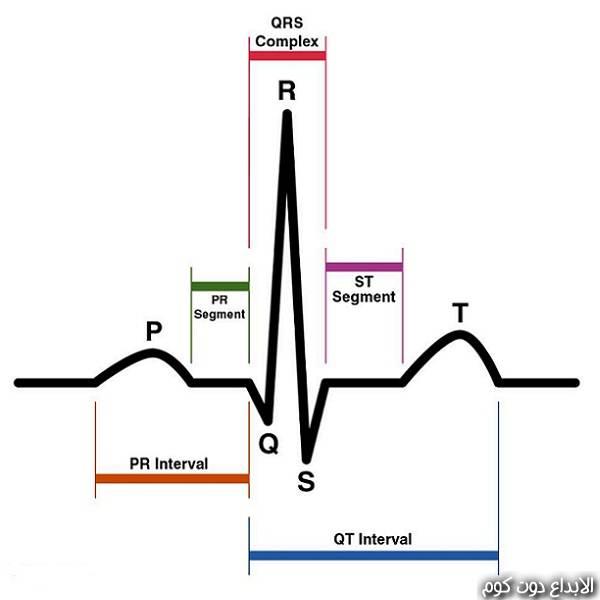 شرح ECG