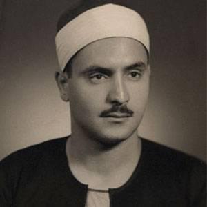 محمد الطوخى
