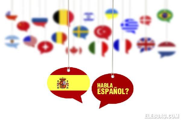 اللغة الاسبانية - كلية الاداب
