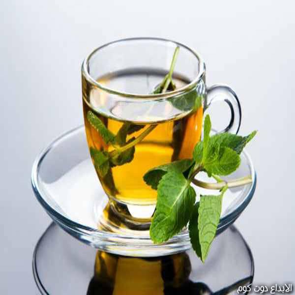مقال: علاج القولون العصبي بالأعشاب  | العلاج بالأعشاب الطبيعية