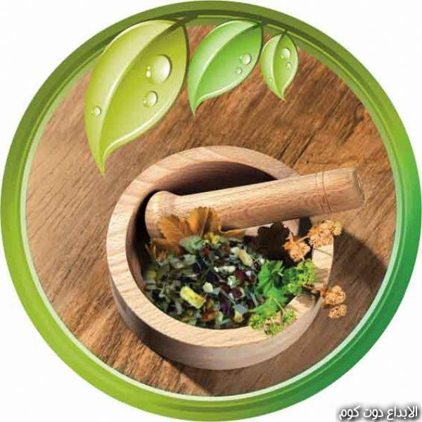 مقال: علاج الغازات و إنتفاخ المعدة بالأعشاب  | العلاج بالأعشاب الطبيعية