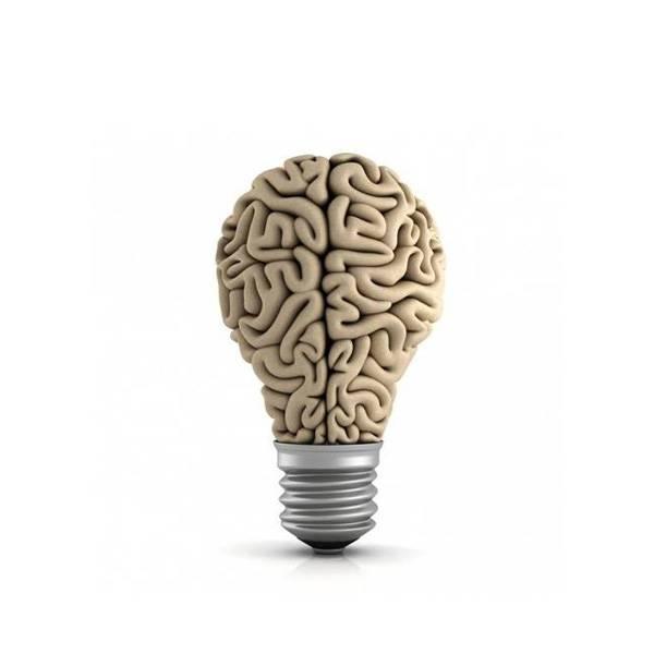 مبادئ التفكير الفلسفي والعلمي - الصف الأول الثانوي - الفصل الدراسي الأول
