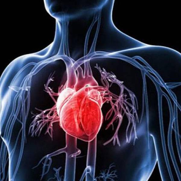 علاج القلب والضغط والشرايين