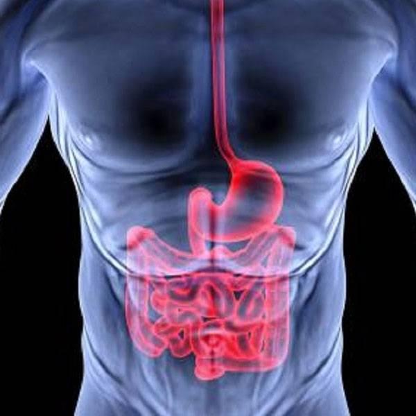 علاج القولون العصبي واضطرابات الهضم