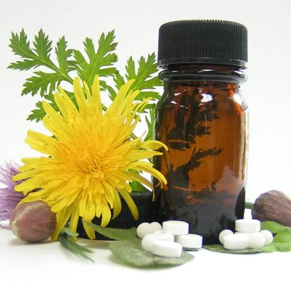 العلاج بالنباتات والبذور الطبيعية