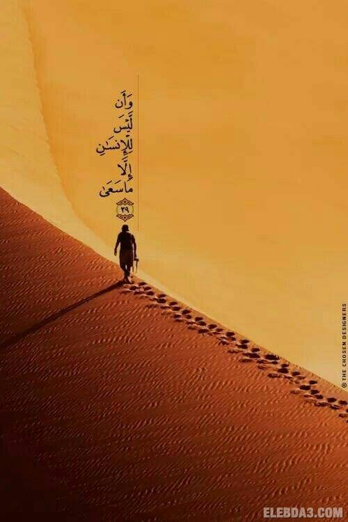 مقال: (حكــايـــات مســـافـر) | مقالات الدكتور مصطفى محمود