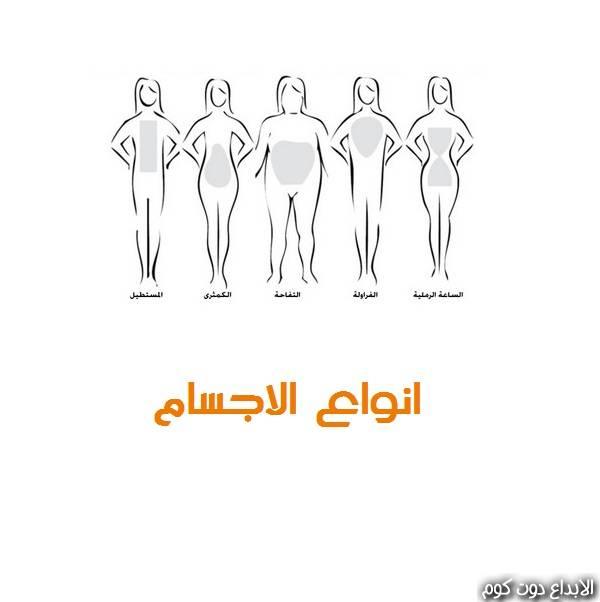 مقال: أنواع الأجسام | التغذية و السمنة