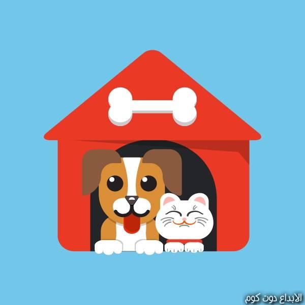 طب الحيوانات الأليفة - الطب البيطري