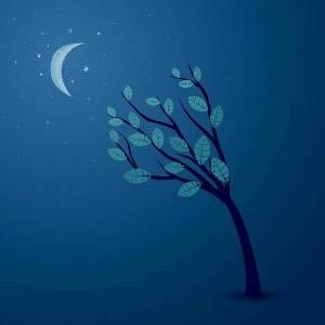 اسئلة الحياة و الموت